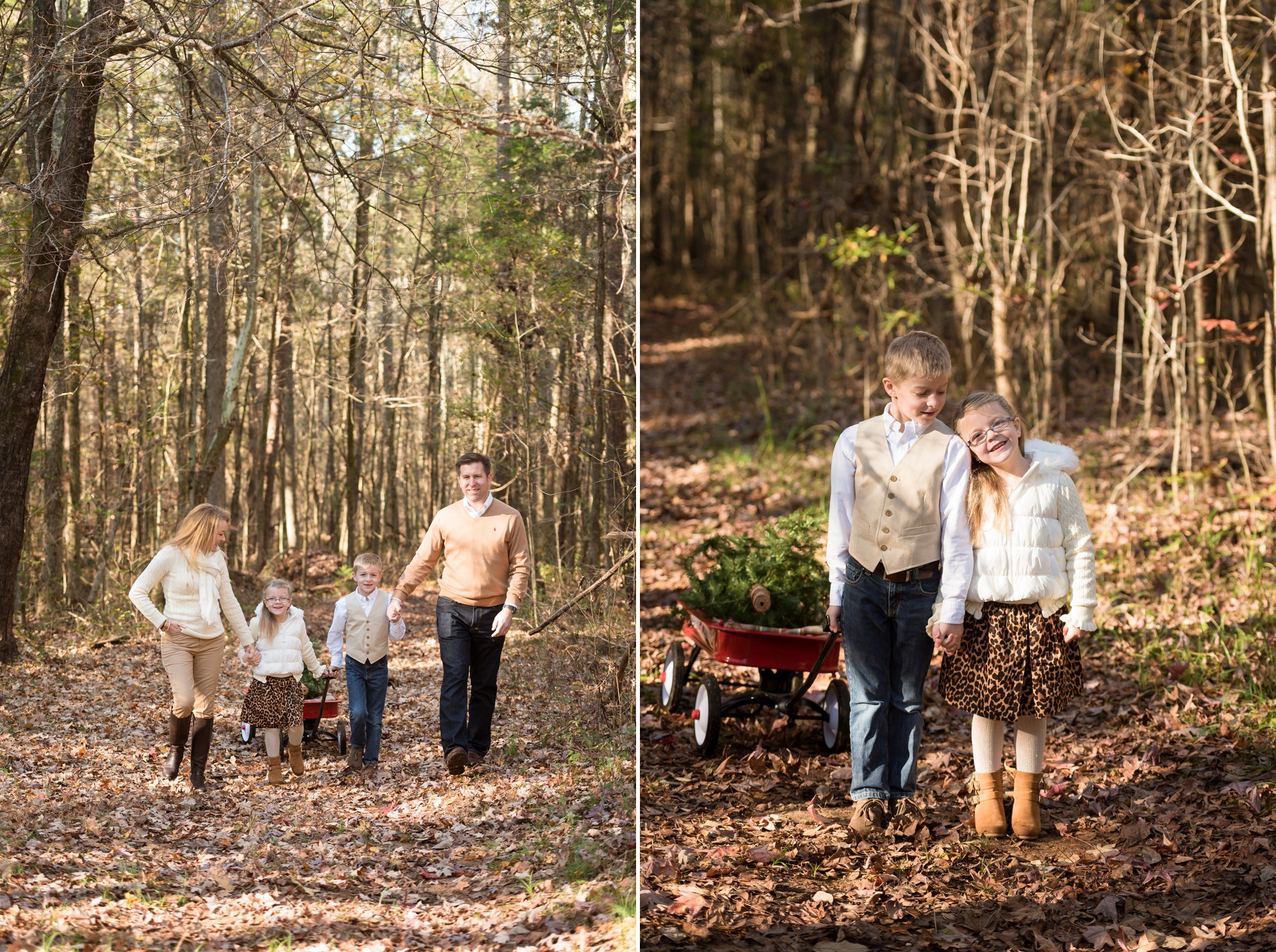 Christmas tree farm family sessions | Charlotte lifestyle ...