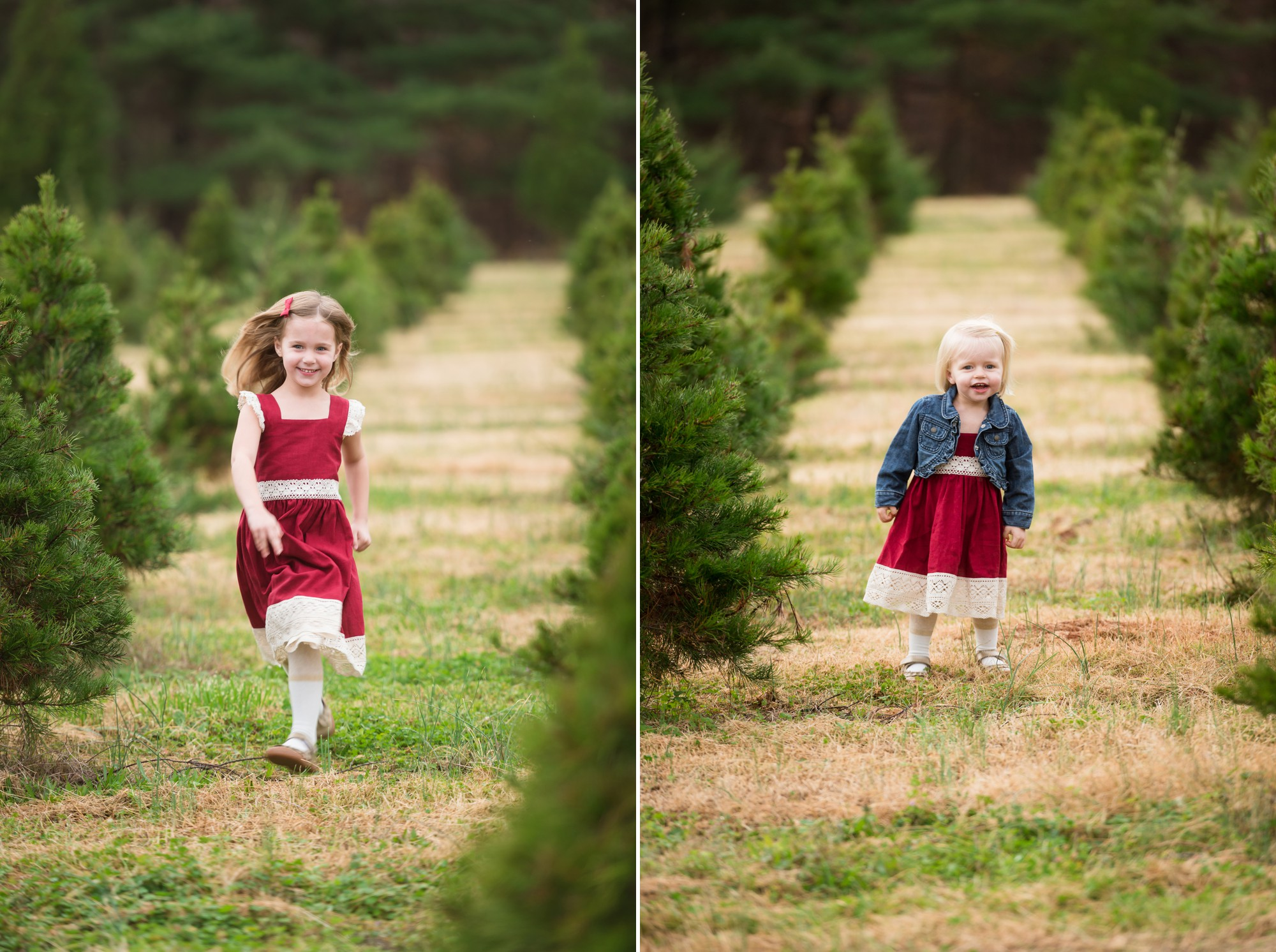 Christmas Tree Farm Photography.Christmas Tree Farm Family Sessions Charlotte Lifestyle