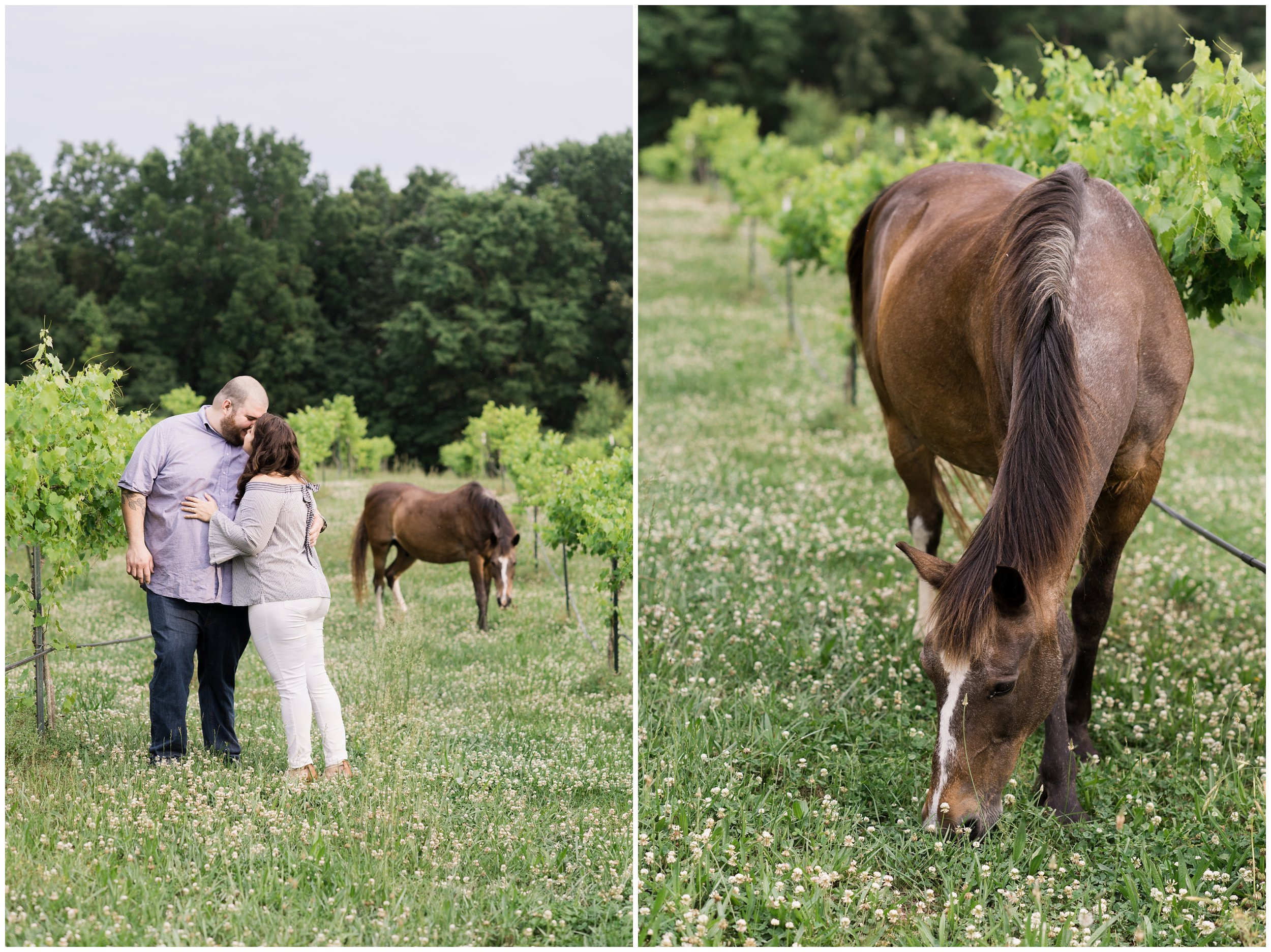 couple kissing in winery while horses roam the pasture
