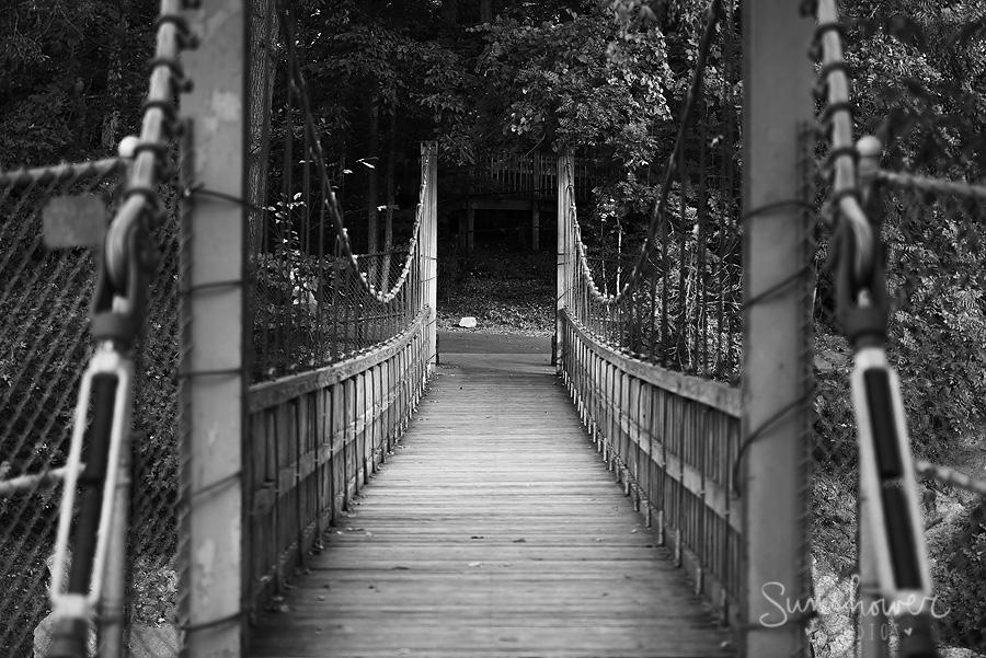 freedom park suspension bridge image