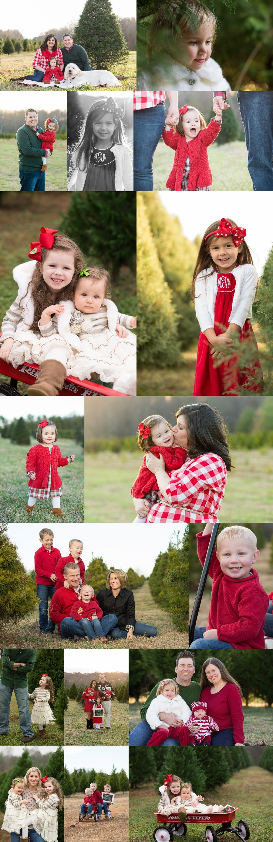 charlotte family photographer holiday