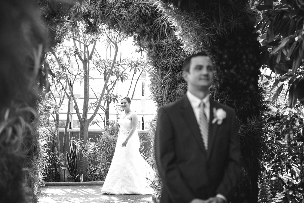 wedding daniel stowe botanical garden 12 -