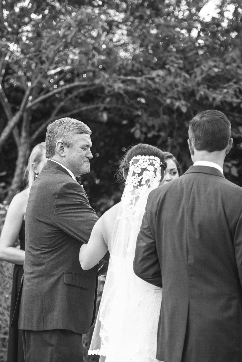wedding daniel stowe botanical garden 20 -