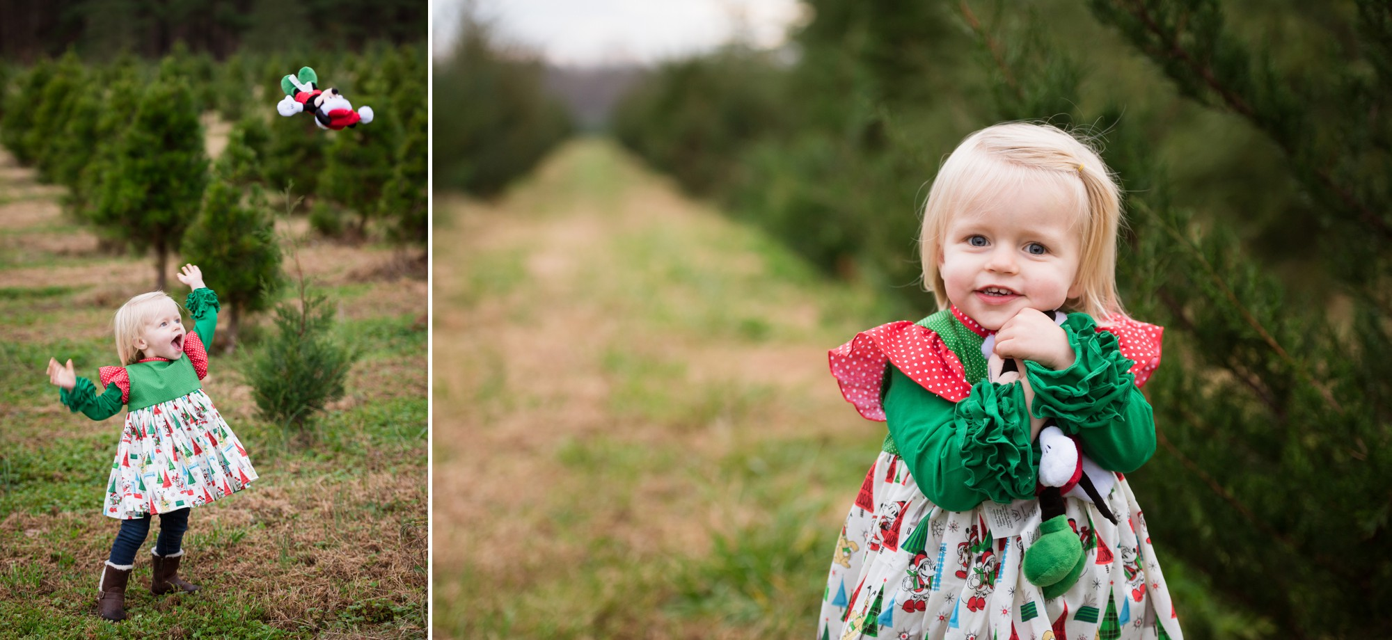 charlotte tree farm family sessions