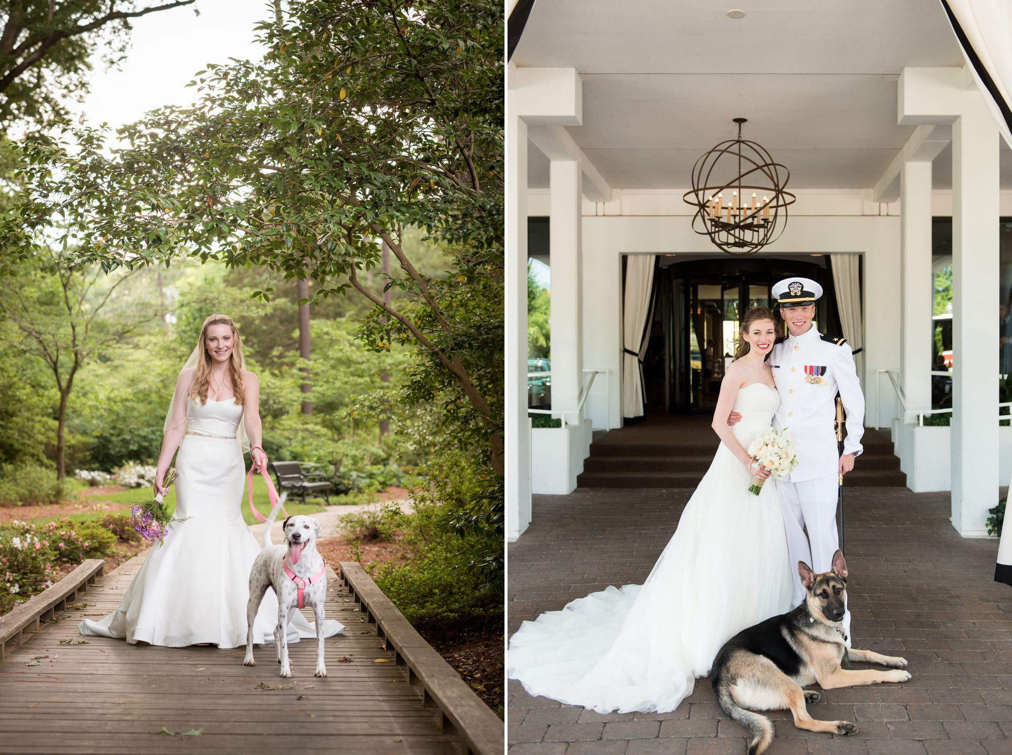 pets-at-weddings-pictures-2