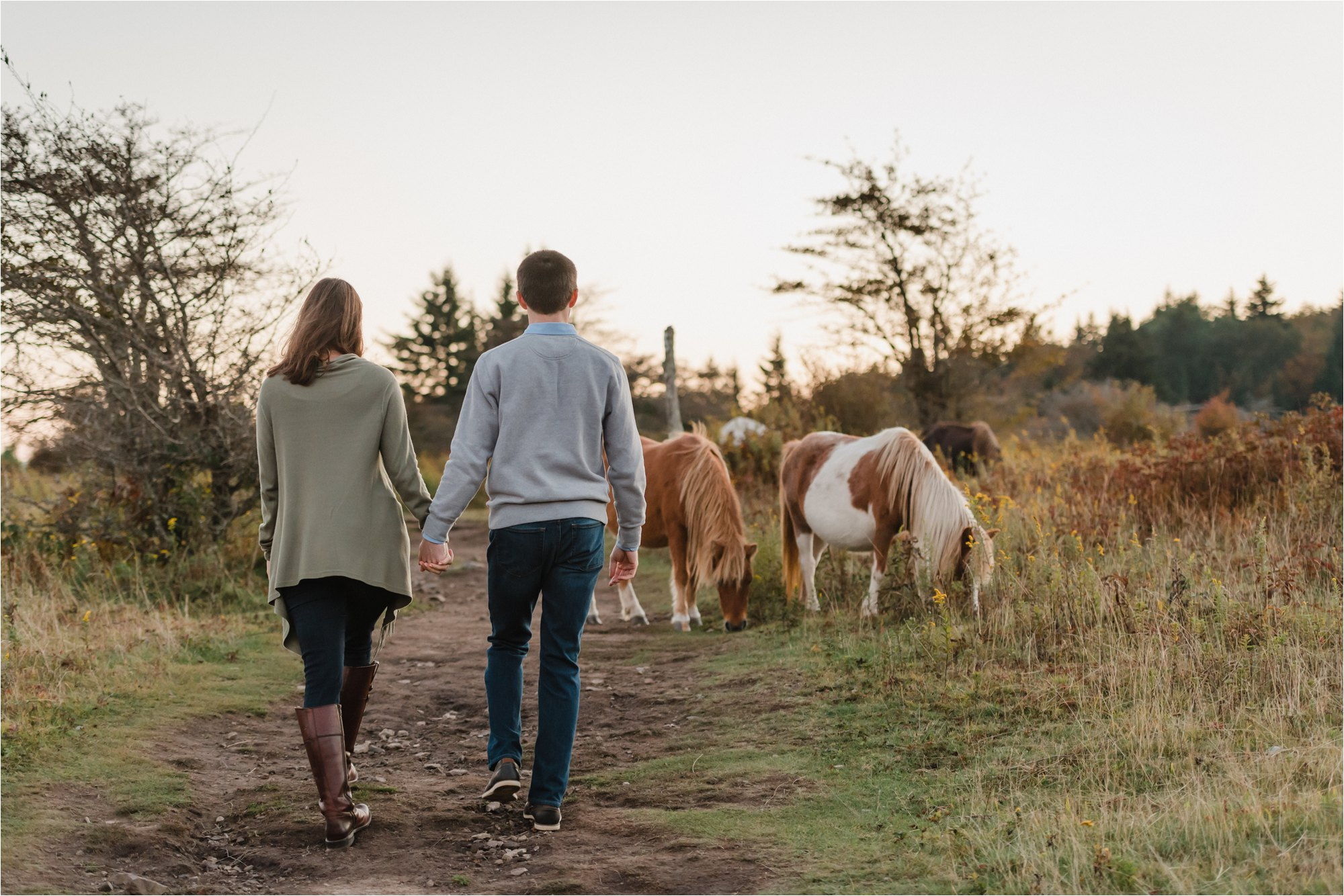 Engagement Session with Ponies