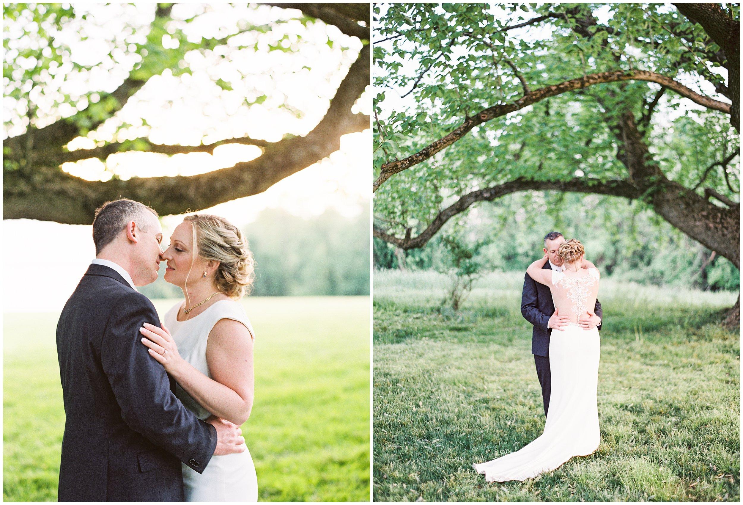 newlyweds under large tree wedding portraits
