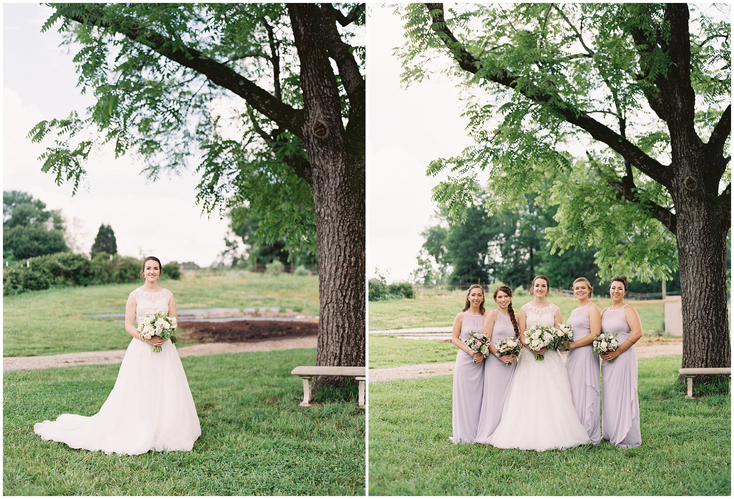bridal portraits under giant tree